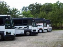 Casino bus transportation