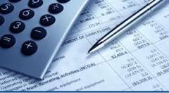 Individual Tax Returns