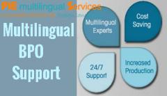 Multilingual outsourcing consultant to India