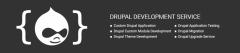 Drupal Development Service