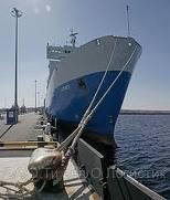 Ocean Cargo Services