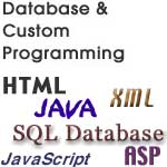 Database and Custom Programming Interactive...