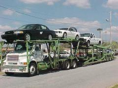 Professional Auto transport carrier