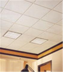 Acoustical Ceiling Services