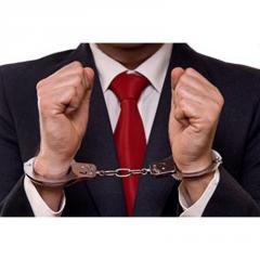 White Collar Litigation