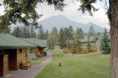 Canadian Rockies Scenic Tour