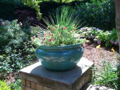 Container Gardening & Landscaping