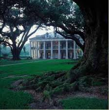 Evergreen and Oak Alley Plantation Tour - Shadow