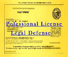 Professional License Defense