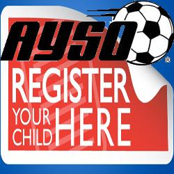 soccer_organization