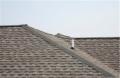 Home Shingle Roofs