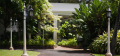 Honolulu City Haunts Walking Tour