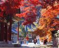 Classic Korea and Beijing Tours