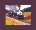 Smoky Mountain Train Excursions