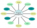 Bailey Tool Program Management