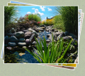 Water Features – Your Own Private Oasis