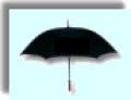 Personal Umbrella program