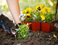 Custom Planting Services