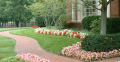 Lawn and horticultural experience