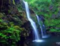 Complete Island (Maui) Tour