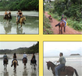 Manuel Antonio Jungle Horseback Riding to Waterfalls Tour