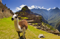 Cusco Total with Overnight in Aguas Calientes Tour