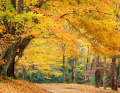 Fall into the Finger Lakes Tour
