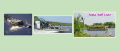The big 3-Dolphins, Manatees & Alligators Tour