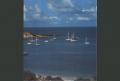 Bermuda - Think Pink Tour