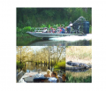 Airboat Ride Tour