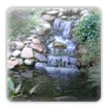 Water Gardens / Water Features