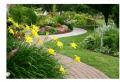 Landscape Design, Constraction, Maintenance